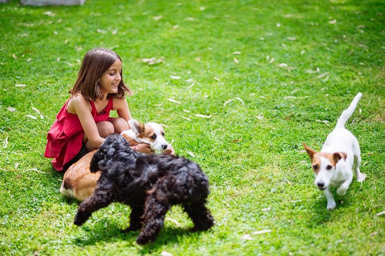 Casamiento dog-friendly