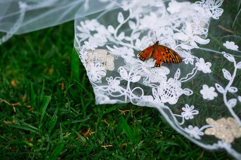 artistic wedding photographs