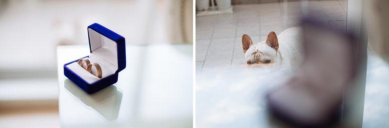 fotos artisticas de los anillos de casamiento
